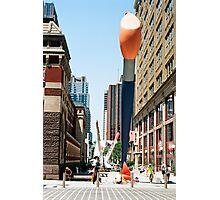 Giant Paintbrush Photographic Print