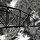 Bridge over troubled water by Sue Hays