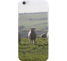 Lone Sheep iPhone Case/Skin