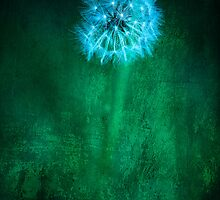 Green Textured Dandelion by GoldenRectangle