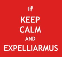 Keep Calm and Expelliarmus Baby Tee