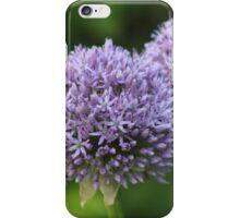 Purple allium  iPhone Case/Skin