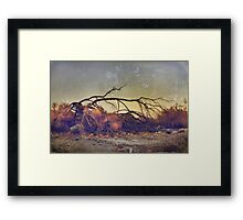 Pleading for Life Framed Print