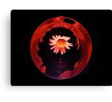 Marguerite in the red period Canvas Print