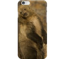Grizzly Cub-Signed-#5174 iPhone Case/Skin