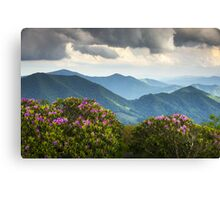 Blue Ridge Appalachian Mountain Peaks and Spring Rhododendron Flowers Canvas Print