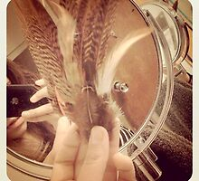Feather clips by LoversArt16