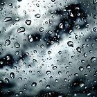Stormy by Sandy Edgar