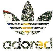 Adored V1 by ABnC