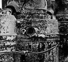 The Dry Motors by Rafiul Alam
