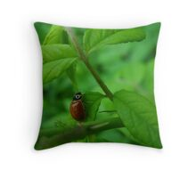 One Young Lady Throw Pillow