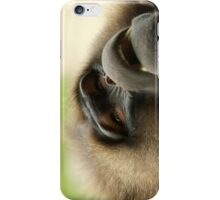 Baboon iPhone Case iPhone Case/Skin