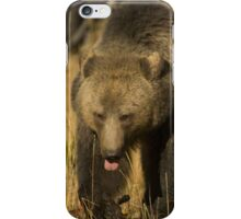 Grizzly Sow-Signed-#5230 iPhone Case/Skin