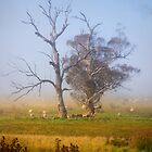 Sheep may safely graze ~ #2 by Rosalie Dale