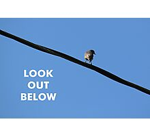 Look Out Below Photographic Print