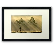 16.6.2012: Bird's Morning Framed Print