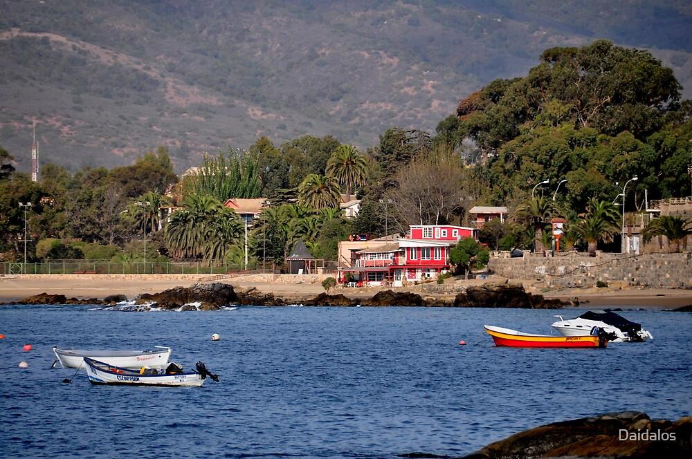 Chile, Bay of Papudo, by Daidalos
