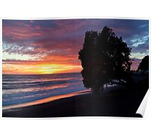 Cape Kidnappers sunrise Poster