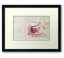 French Lace Rose Framed Print