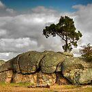 Big Rock - You Yangs by Colin  Ewington