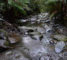 Flowing downstream by jessunderwater