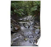 Flowing downstream Poster