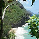 Kalalau Trail, Kauai, Hawaii by swanny