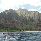 Na Pali Coast, Kauai, Hawaii by swanny