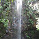 Secret Waterfall, Kauai, Hawaii by swanny