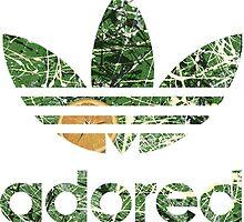 Adored V4 by ABnC