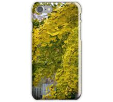 GINGKO TREE IN AUTUMN iPhone Case/Skin