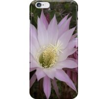Cactus flower blossom iphone case iPhone Case/Skin
