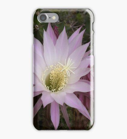 Cactus flower blossom iphone case iPhone Case/Skin