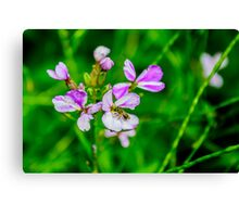 Purple Flowers with Fly Canvas Print