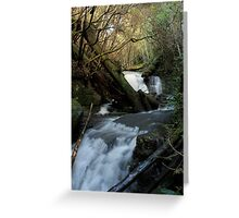 Strickland Ave Falls 3 Greeting Card