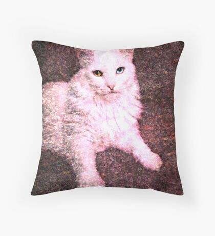 A lady in pose Throw Pillow