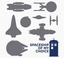 Spaceship Of My Choice by Ashqtara