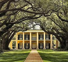 Oak Alley Plantation by SuddenJim