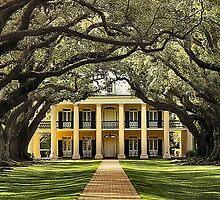 Oak Alley Plantation by SuddenJim