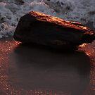 Like Driftwood In Fire - Como Madera Flotante En Fuego by Bernhard Matejka