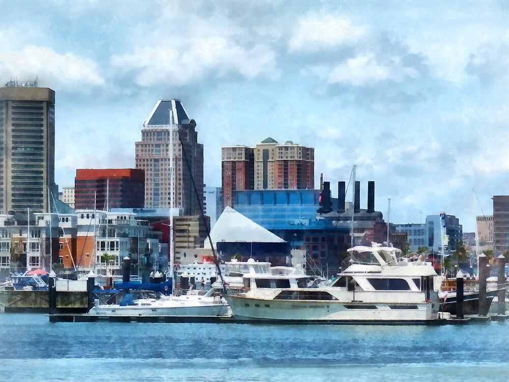 Baltimore Skyline and Harbor by Susan Savad