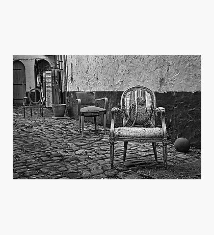 Vintage Chairs Photographic Print