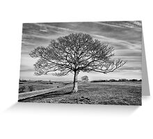 Skeletal Tree Greeting Card