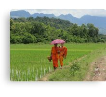 Novices Walking Home Through Rice Field Canvas Print