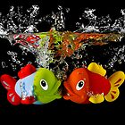Two Toy Fish Kissing by Patricia Jacobs CPAGB LRPS BPE2