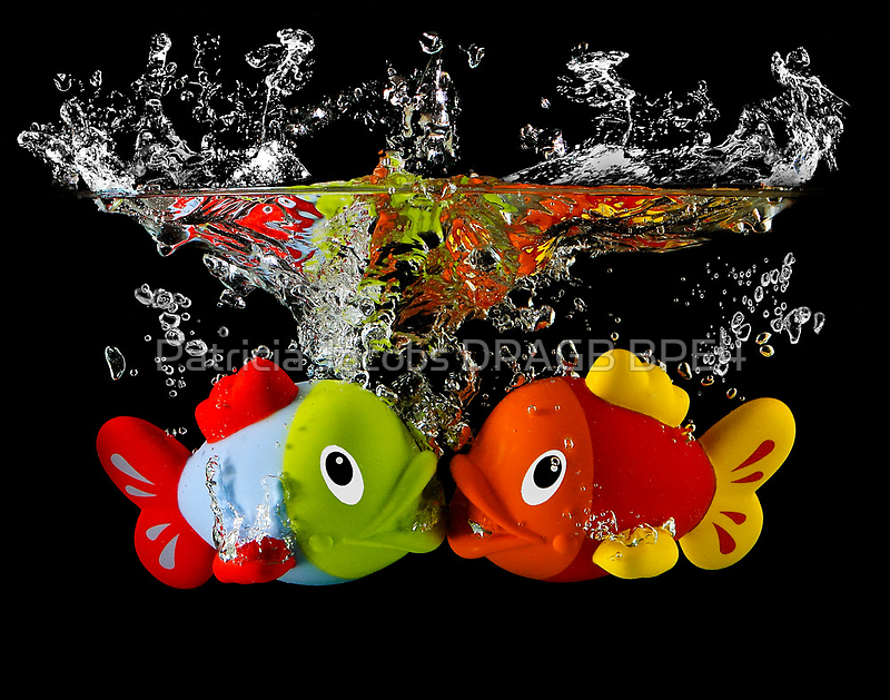 Two Toy Fish Kissing by Patricia Jacobs CPAGB LRPS BPE3