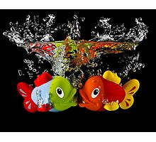 Two Toy Fish Kissing Photographic Print