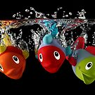 Three Toy Fish With Splash by Patricia Jacobs CPAGB LRPS BPE3