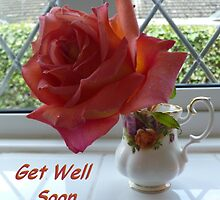 Single Rose (Get Well Soon) by Vicki Spindler (VHS Photography)