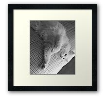 comfortable Framed Print